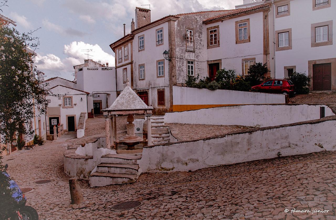 2012 - Entre Montemor-o-Novo e Castelo de Vide 527