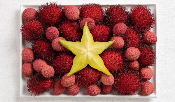 vietnam-food-flag_600.jpg