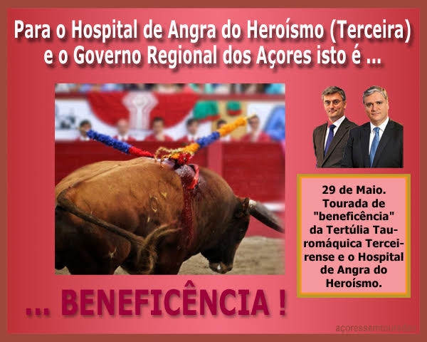 TOURADA AÇORES.jpg