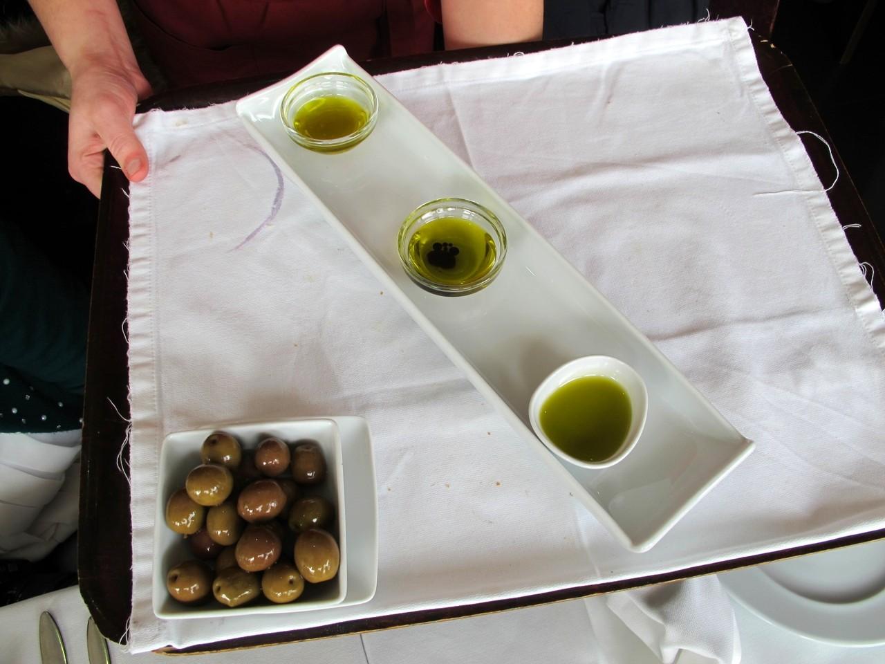 Azeitonas & Azeites... de Trás-os-Montes