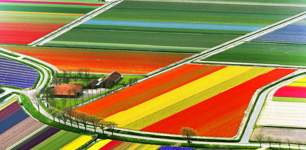 colorful_6.jpg
