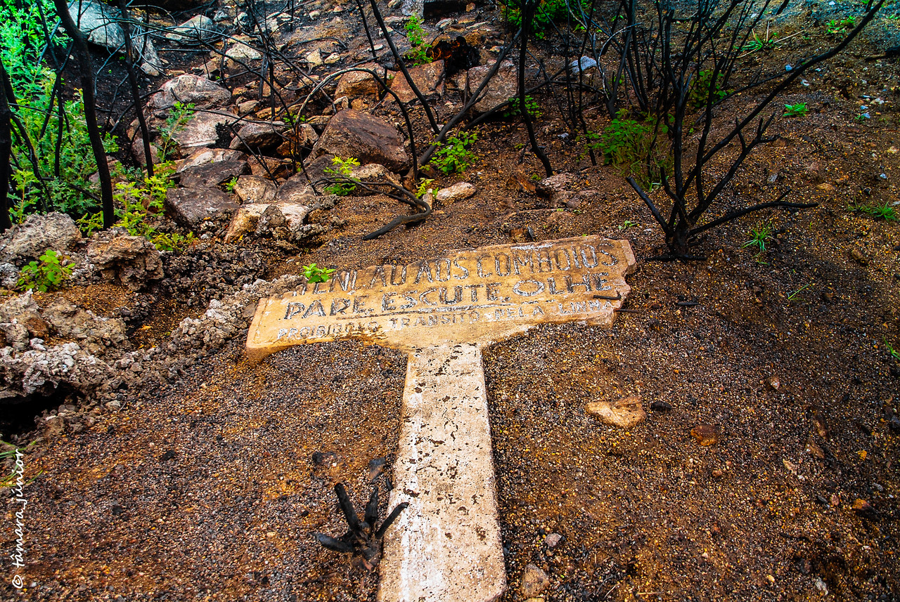 21.- 2010 - Caminhada Linha CP Vidago-Pedras [1º