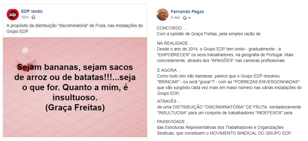 GraçaFreitas1.png
