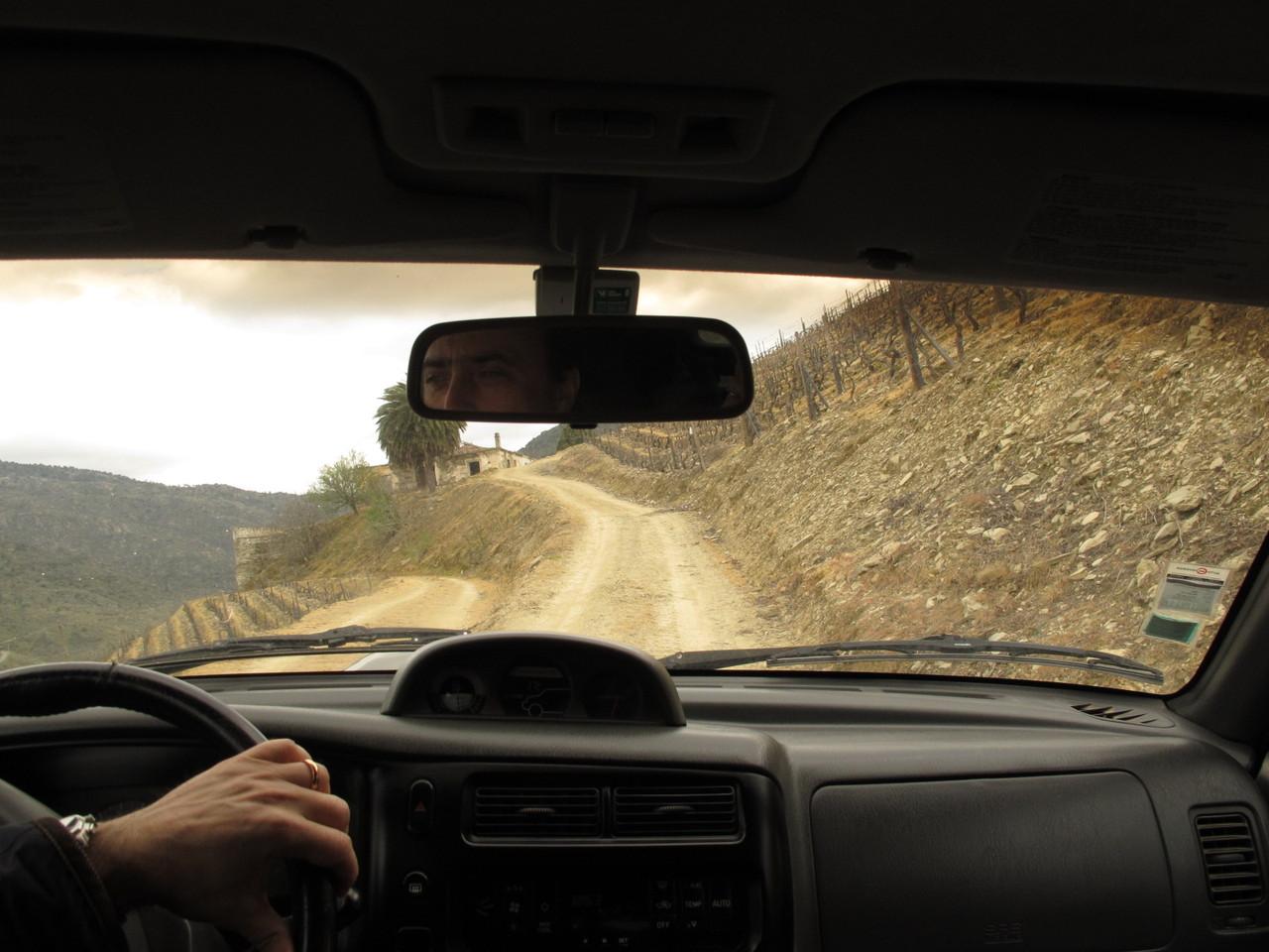 A caminho da antiga casa da Quinta da Boavista