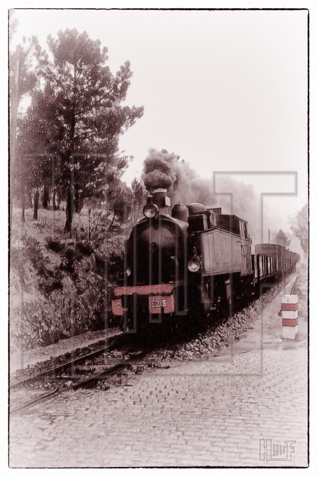 CP0101.jpg