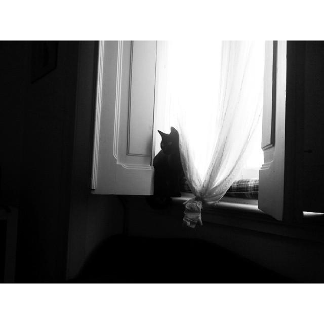 outono_04.jpg