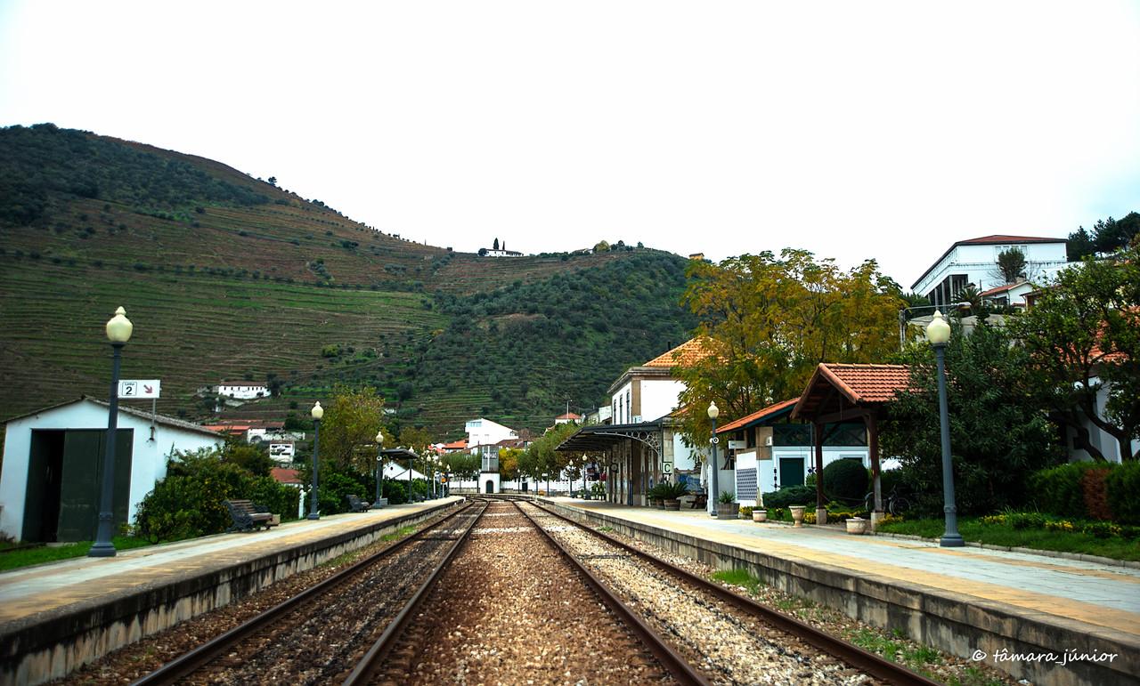 (01)2015 - Outono no Douro Vinhateiro II (223).jpg