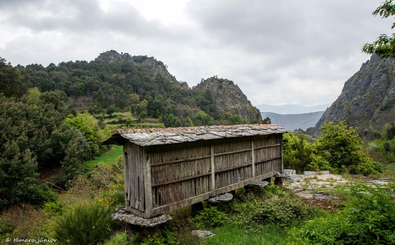 2015 - S. Pdro do Sul (Termas+Manhouce+Pena) (305)