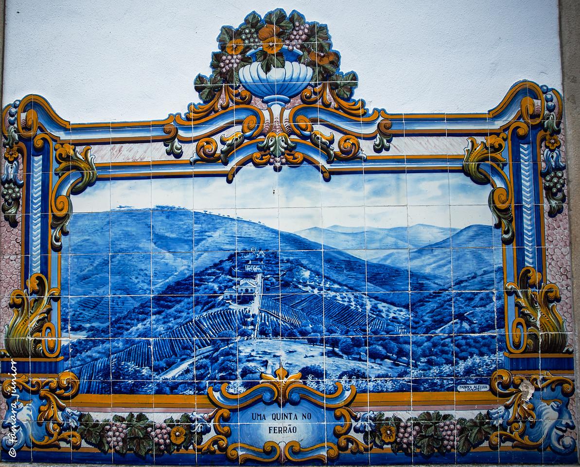 2015 - Outono no Douro Vinhateiro II (210).jpg