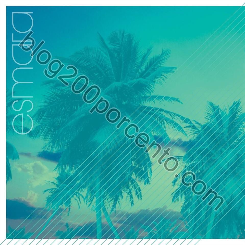 o_596f8fe536eeedf1_006.jpg