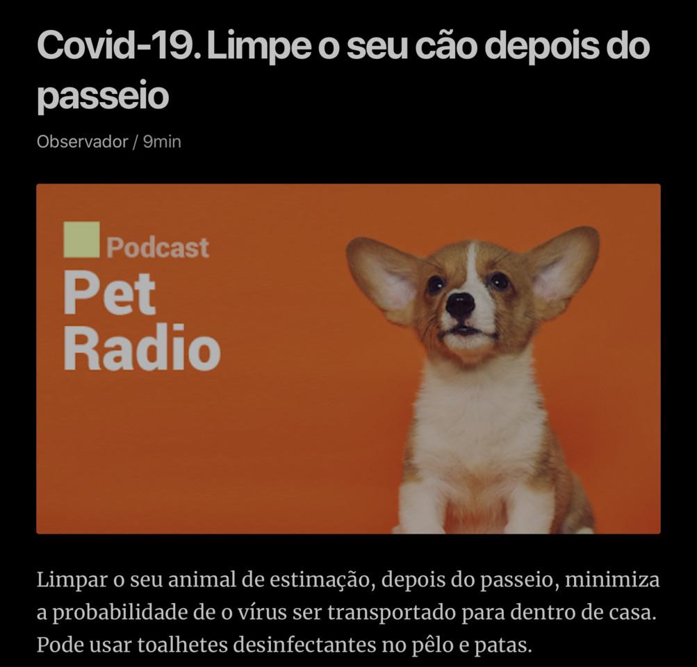 Banho ao cão!… (Observador, 21/III/20)