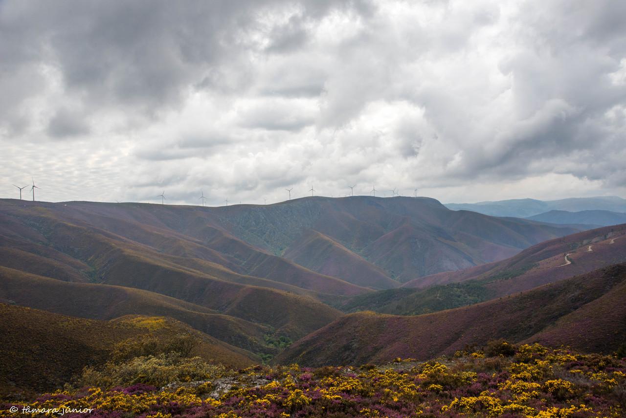 2015 - S. Pdro do Sul (Termas+Manhouce+Pena) (226)