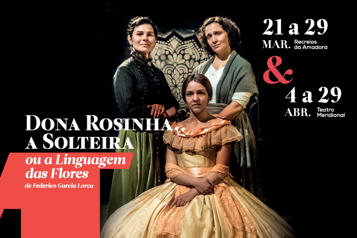 TeatroMeridional_BannerSite_720x480_Rosinha01.png