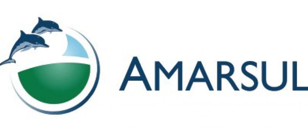 Amarsul logo