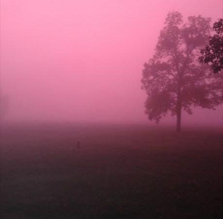 pink-fog.jpg