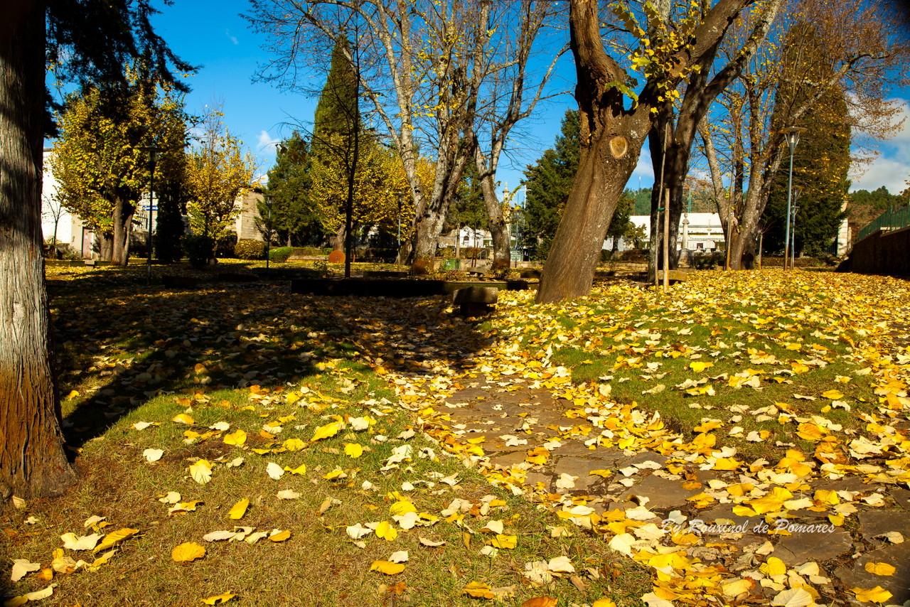 Outono em Murça (16).JPG