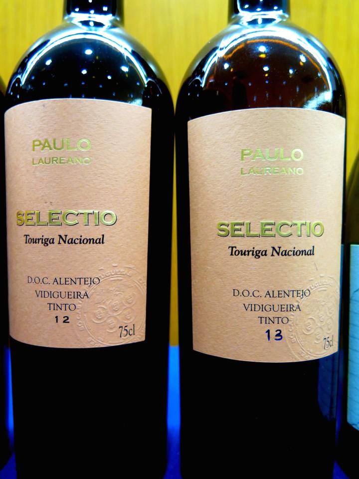 Tinta Grossa na Vidigueira, um vinho único no mundo
