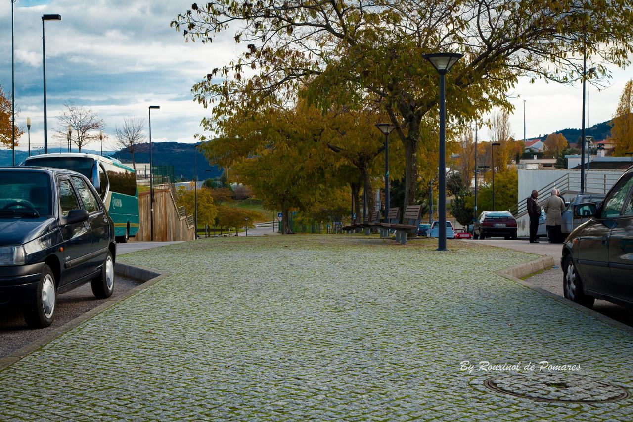 Outono em Murça (9).JPG