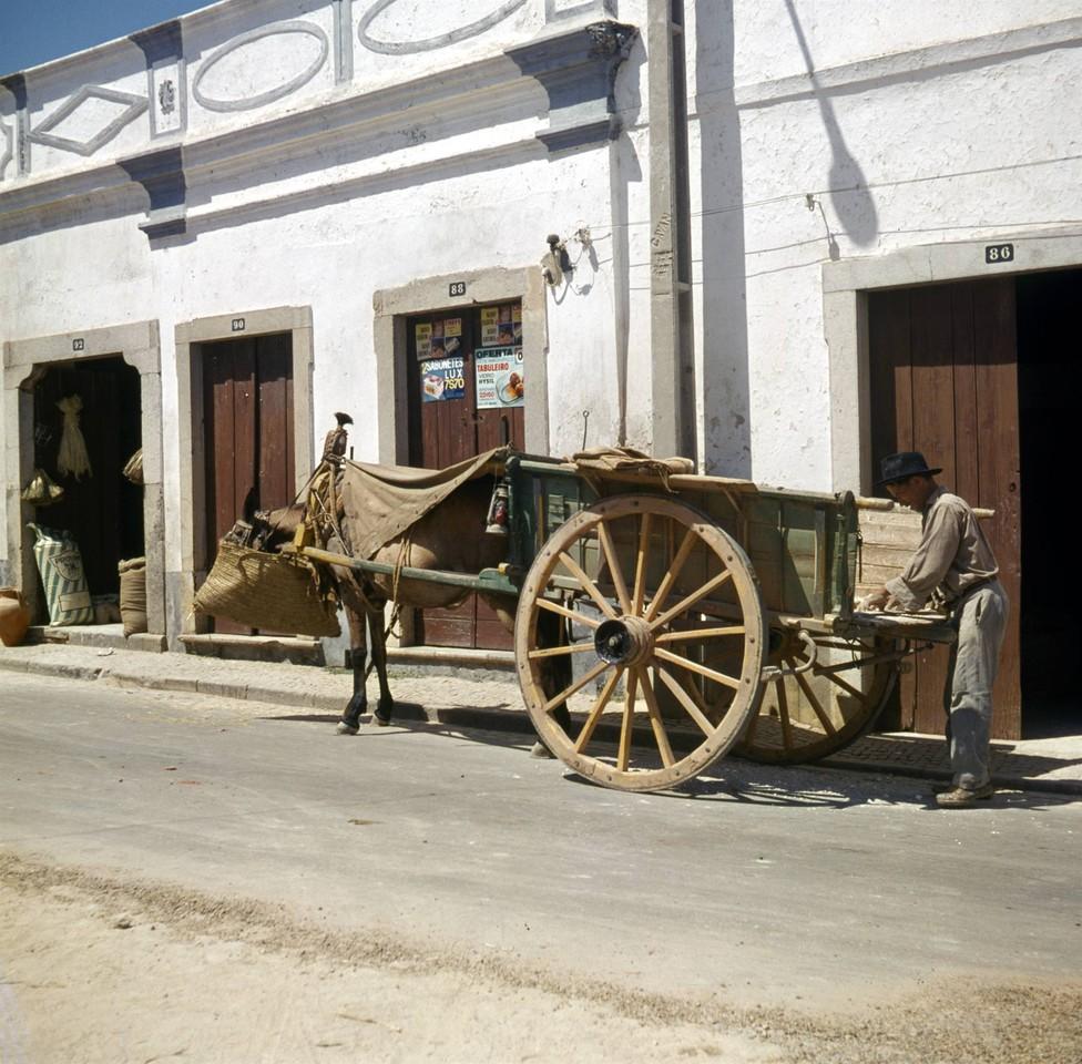 Carroça a postos, besta em abastecimento, Algarve (A.Pastor, 197...)