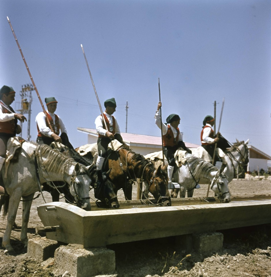 Campinos, Ribatejo (A. Ferrari, 1950-70)