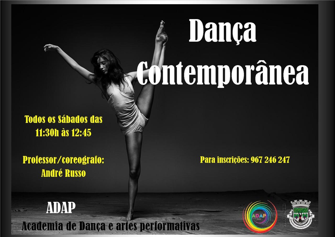 cartaz dança contemporanea 2015 e 2016.jpg