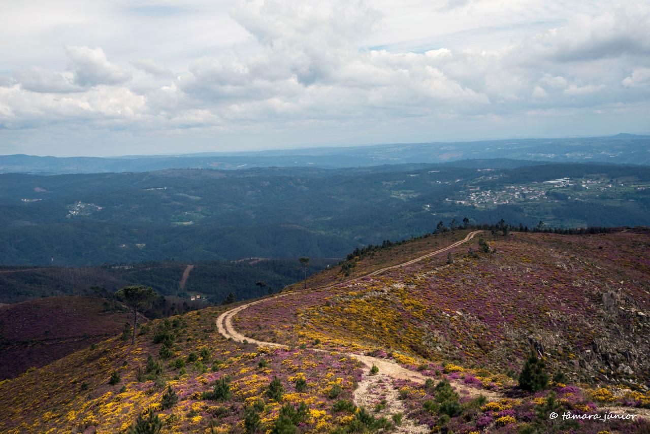 2015 - S. Pdro do Sul (Termas+Manhouce+Pena) (214)