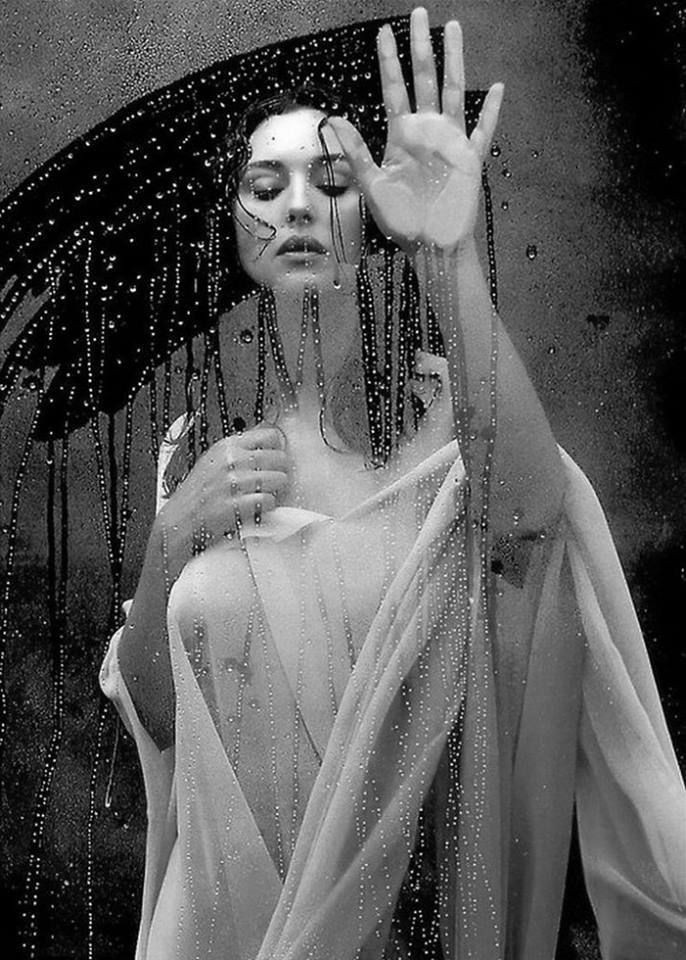 Monica Bellucci, por Helmut Newton.jpg