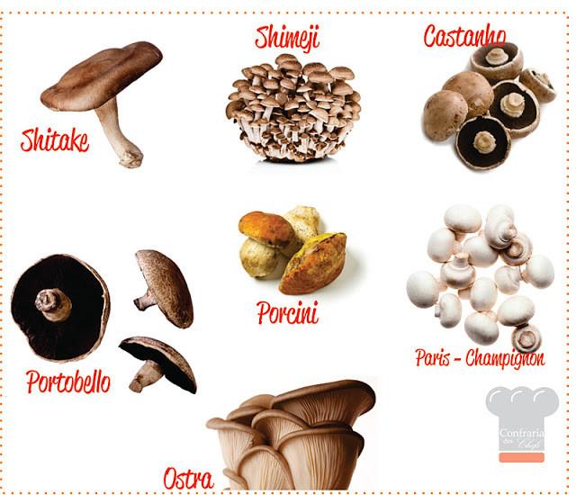 Blog Confra dos Chefs - Cogumelos.jpg