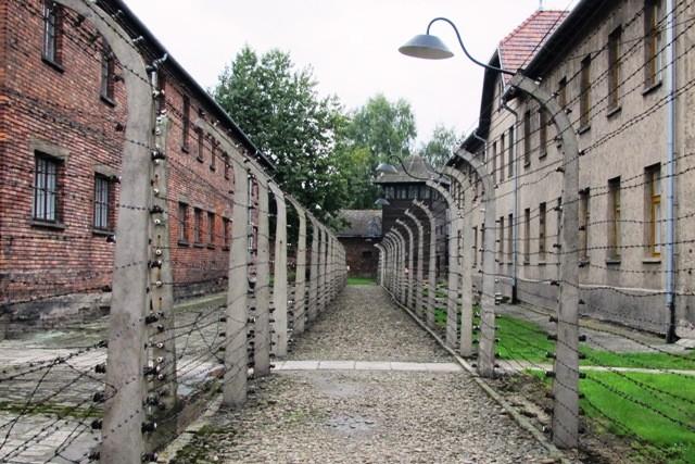 Auschwitz_6