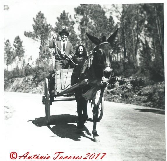 Pais na carroça.jpg