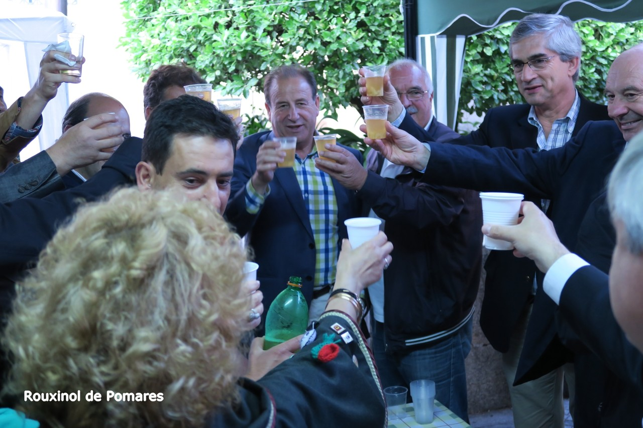 Pela Feira das Freguesias Arganil 2015 I (13)