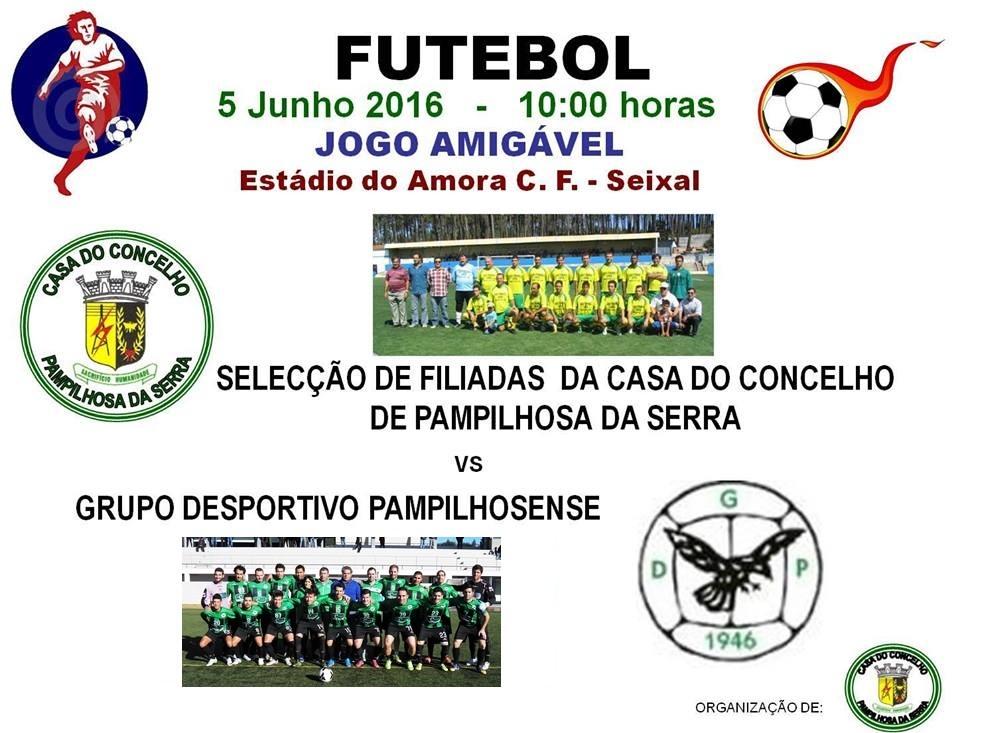Cartaz jogo casa concelho 5-6-16.jpg