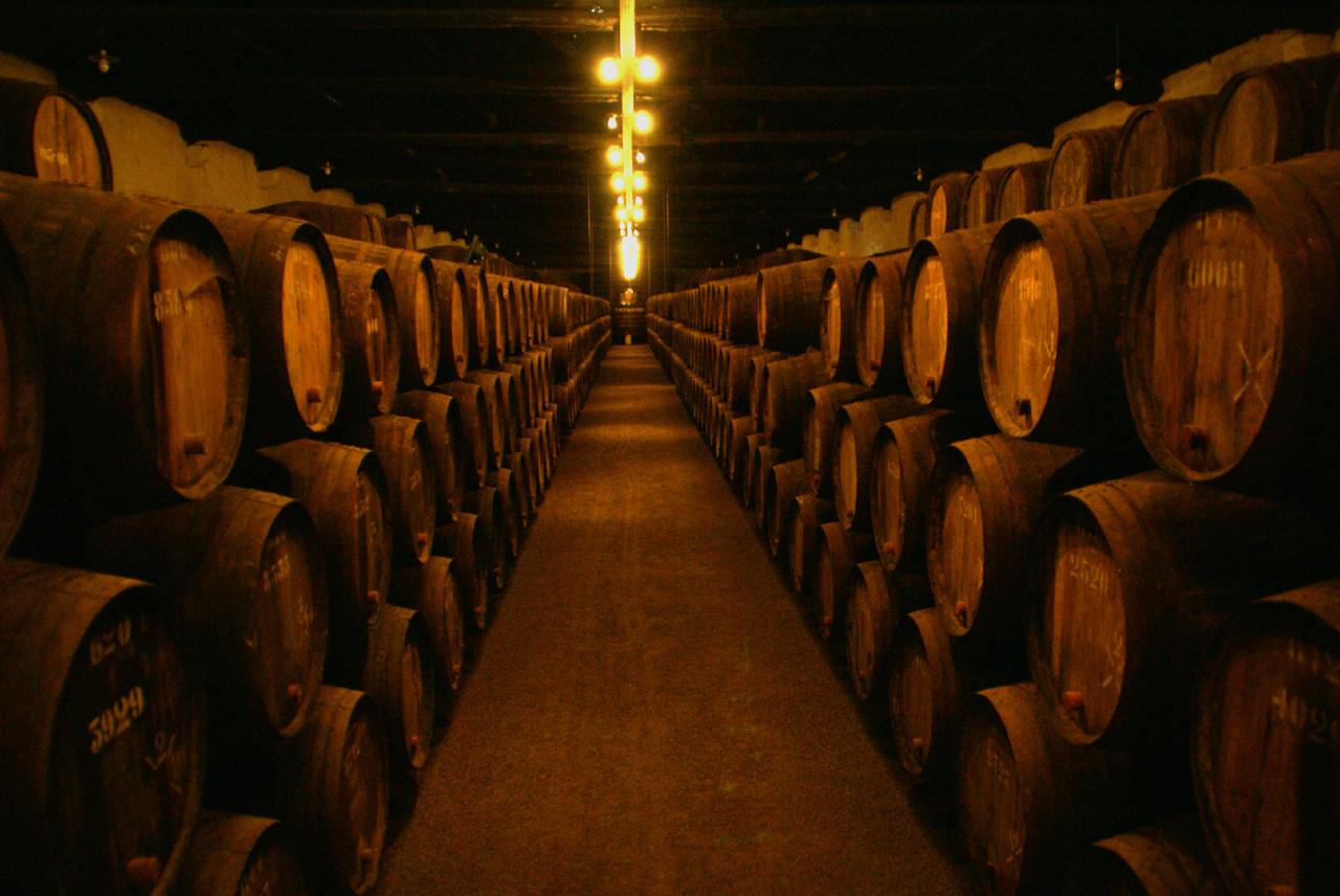 Wine_cellars_of_taylor´s.jpg