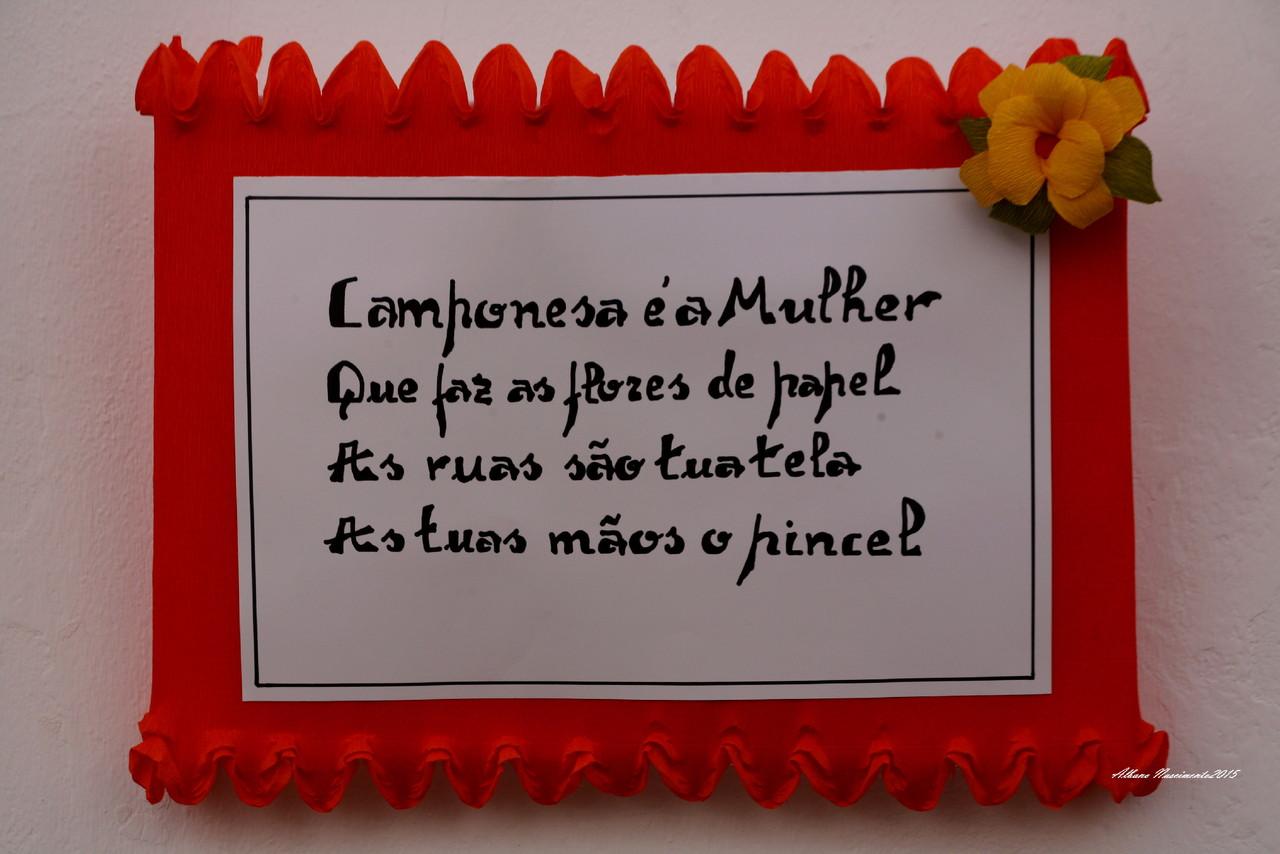 CAMPO MAIOR_6539 (8).JPG