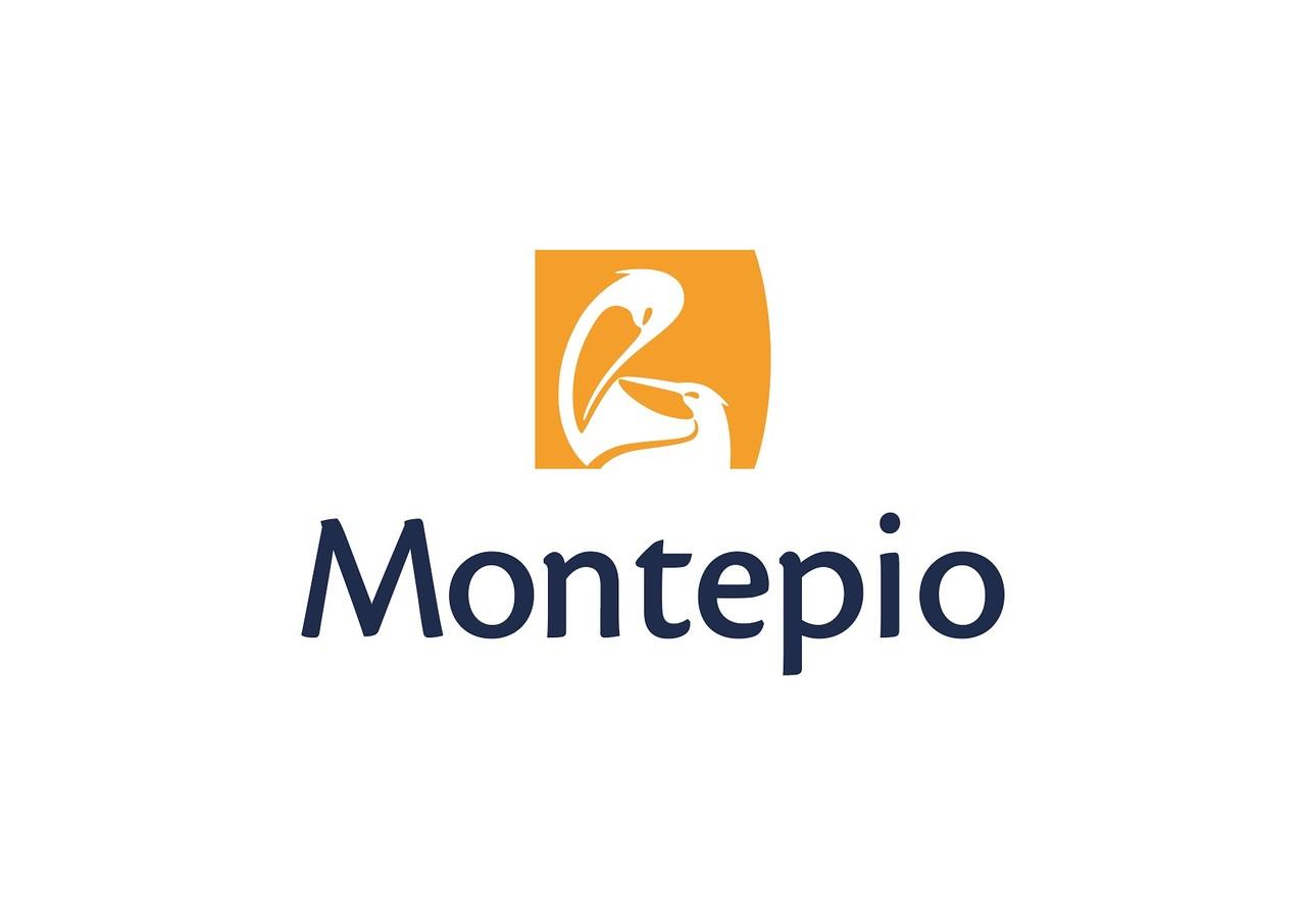 Logo montepio-2