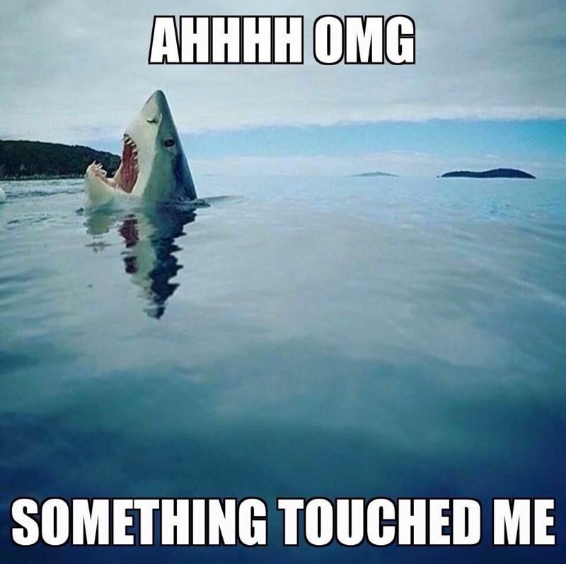 Every time I go swimming - Imgur.jpg