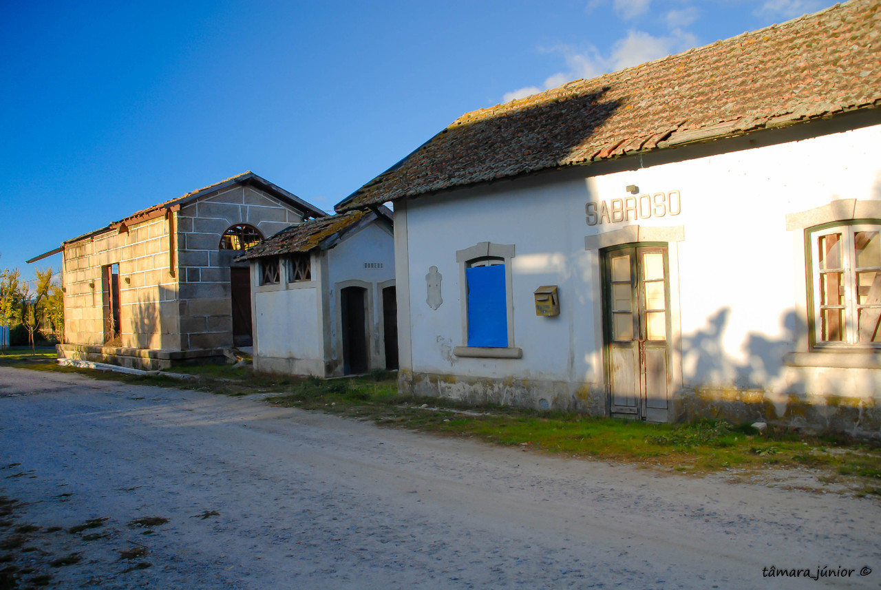 2010 - Caminhada limha CP Sabroso-Vila Pouca 012.j
