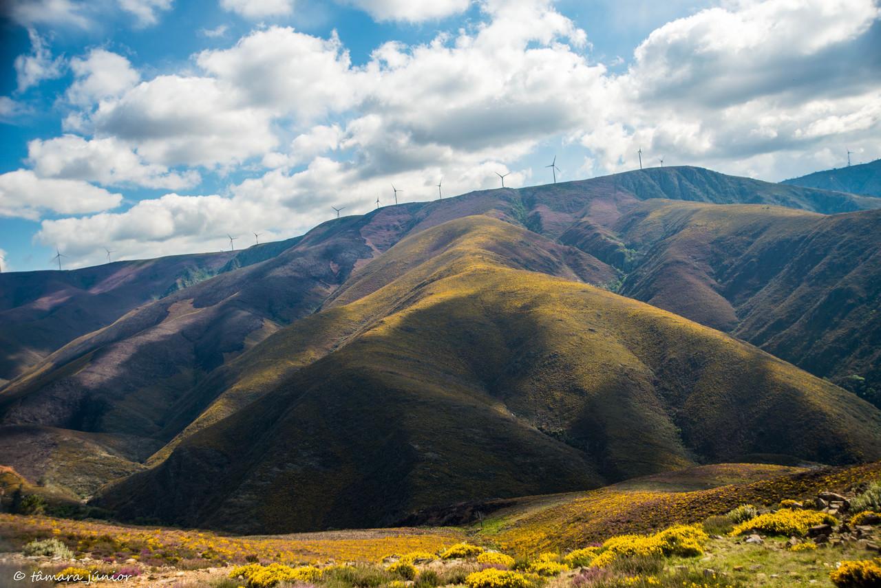 2015 - Alvarenga-Senhora da Mó-Regoufe-Drave (697