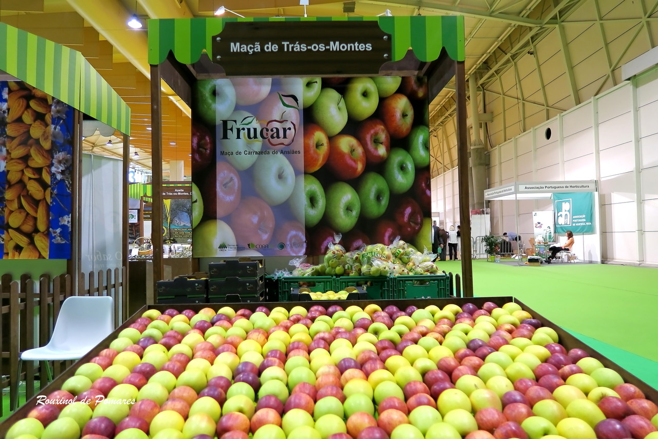 Portugal Agro 2015 (0013)