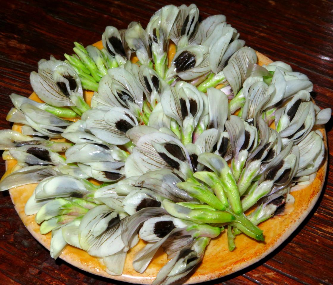 Flores de Fava por Leonardo Pereira