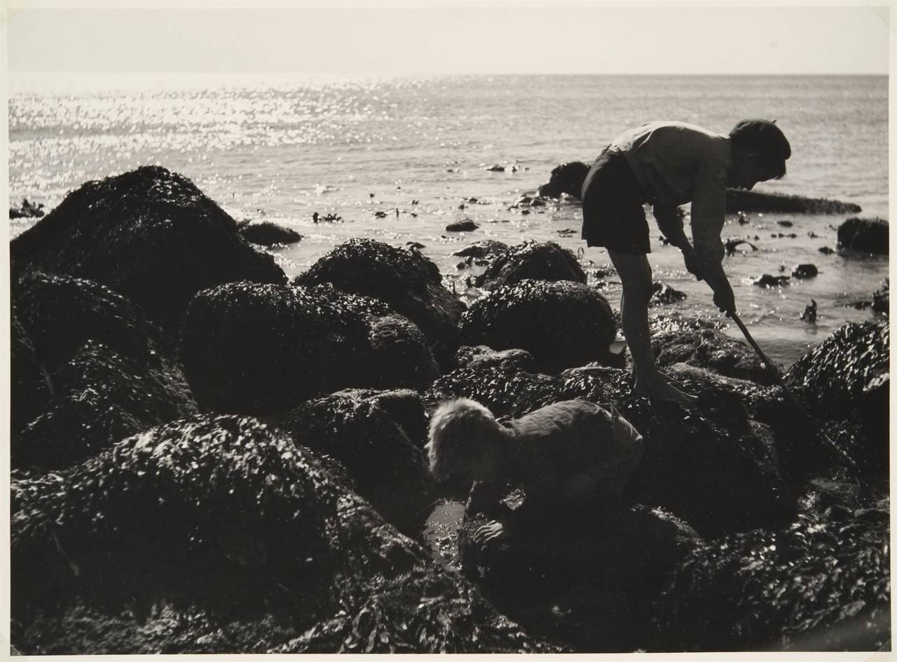 Na faina da minhoca, Sesimbra (A. Pastor, 1943-45)