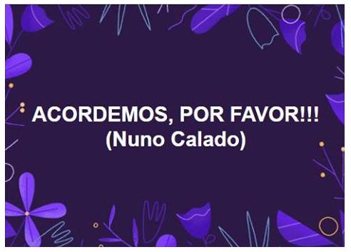 NunoCalado0.png