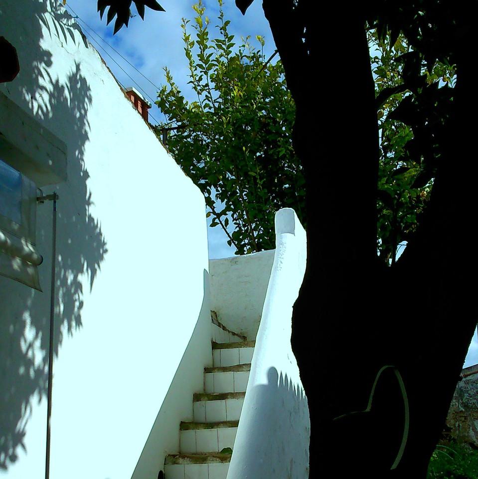 casa da laranjeira 2.jpg
