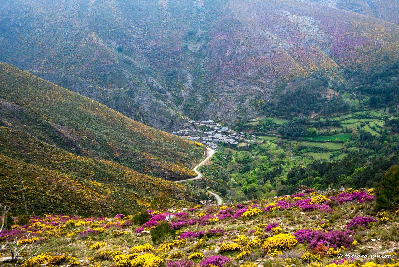 2015 - S. Pdro do Sul (Termas+Manhouce+Pena) (244)