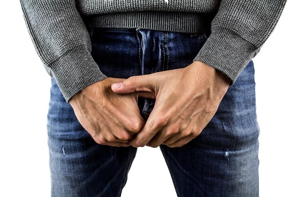 testicles-2790218_960_720.jpg