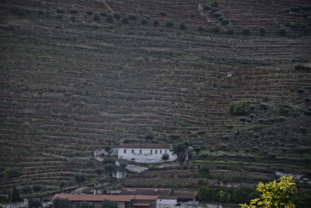 Lumbudus - Douro - Out. 2014 093.JPG