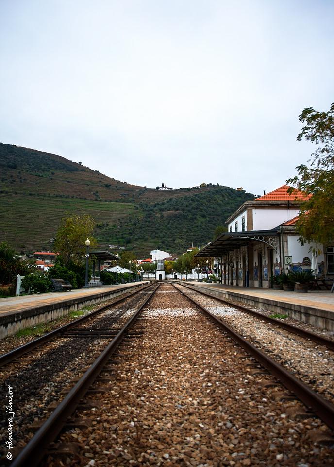2015 - Outono no Douro Vinhateiro II (222).jpg