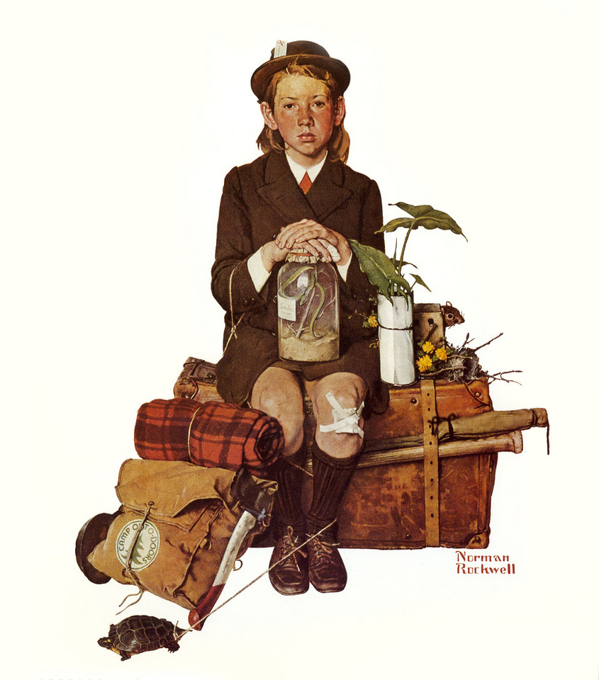 norman-rockwell-home-from-camp.jpg