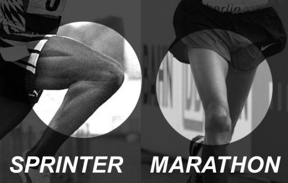 sprinter-vs-marathon-w580.jpg