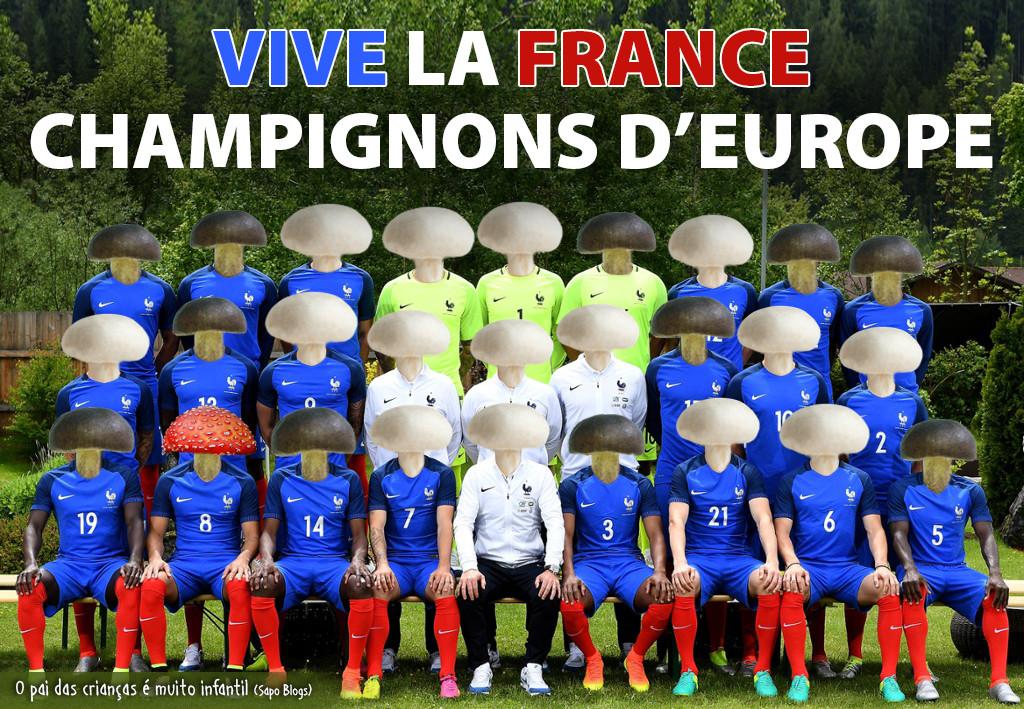 Champignons d'Europe.jpg